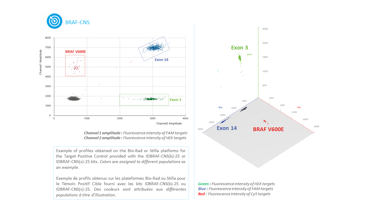 IDBRAF -CNS- Tumor DNA or circulating DNA or ctDNA BRAF Mutation Detection Kit by Digital PCR