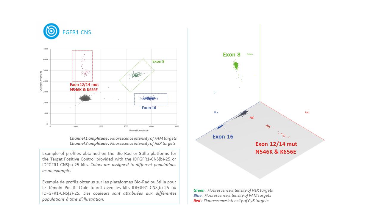 IDFGFR1- Tumor DNA or circulating DNA or ctDNA FGFR1 Mutation Detection Kit by Digital PCR