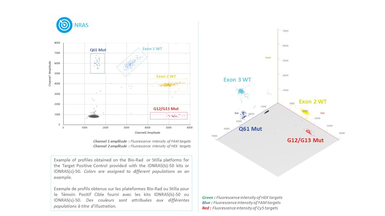 IDNRAS- Circulating tumoral NRAS Mutation Detection Kit