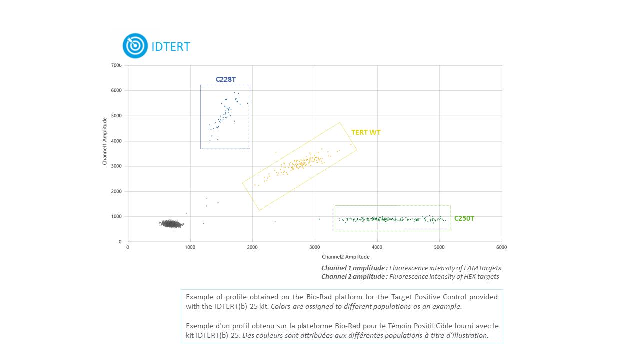 IDTERT- Tumor DNA TERT Mutation Detection Kit